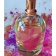 Perfumy Treasure of Africa 50 ml