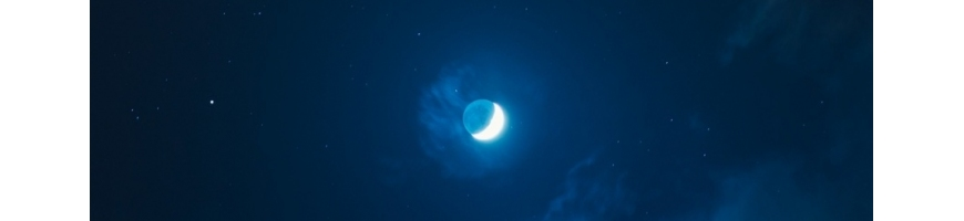Blue Moon BRONZER & SKWALAN